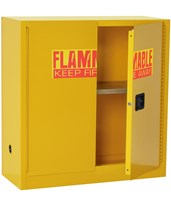 2-Door Flammable Safety Cabinet SC300F-P