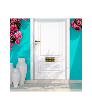 AdirHome Fabulous Italian Through-Door Mail Slot ADI631-0807-BRZ