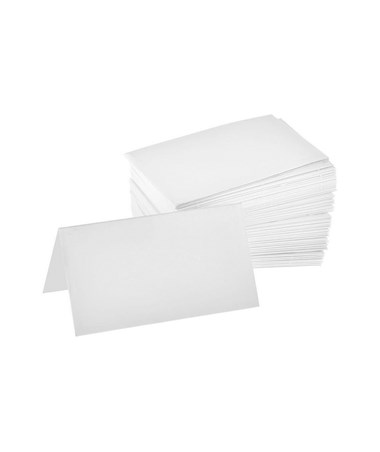 Place Cards (100 Per Box) ALP493-01-