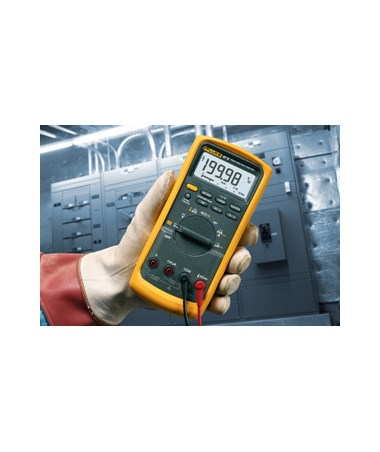 Fluke 80 Series V Industrial Multimeter FLU2075004-
