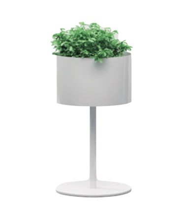 Magnuson Group Greencloud Planter MGPGL-10-S-S-