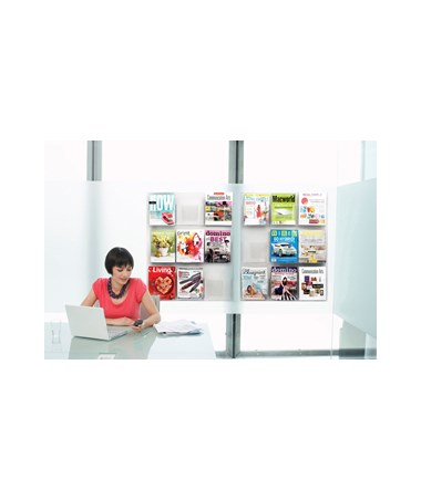 Safco Reveal Magazine Display