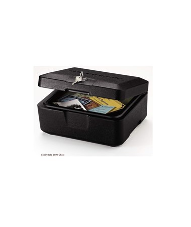 SentrySafe Fireproof Personal Privacy Chest