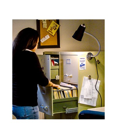 TPI Medium Duty Incandescent Machine Tool Light with Flexible Arm TPI12RM3